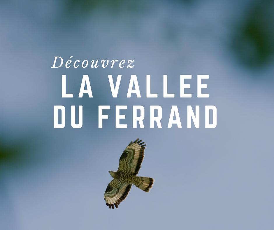 Tourisme & animation dans le Ferrand